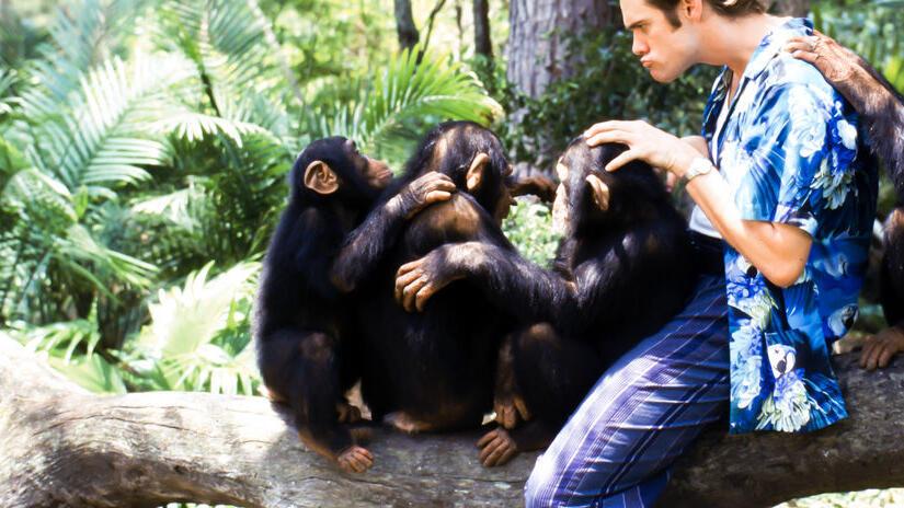 Immagine tratta da Ace Ventura - Missione Africa