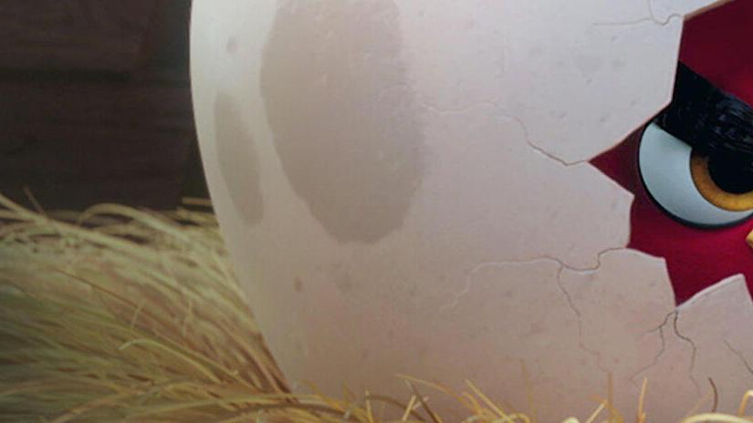 Immagine tratta da Angry Birds - Il film