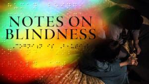 Appunti sulla cecità