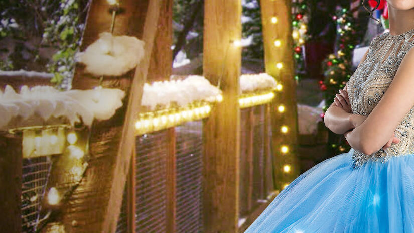A Cinderella Story Christmas Wish Movie 2019 Streaming Available