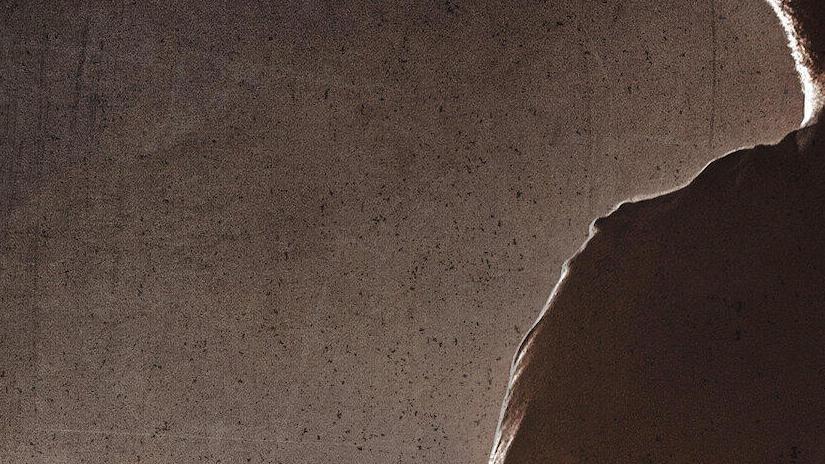 Immagine tratta da Chris Rock Total Blackout: The Tamborine Extended Cut