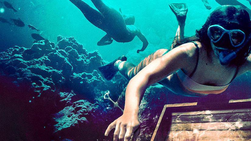 Immagine tratta da Dive Club - Un tuffo nel mistero