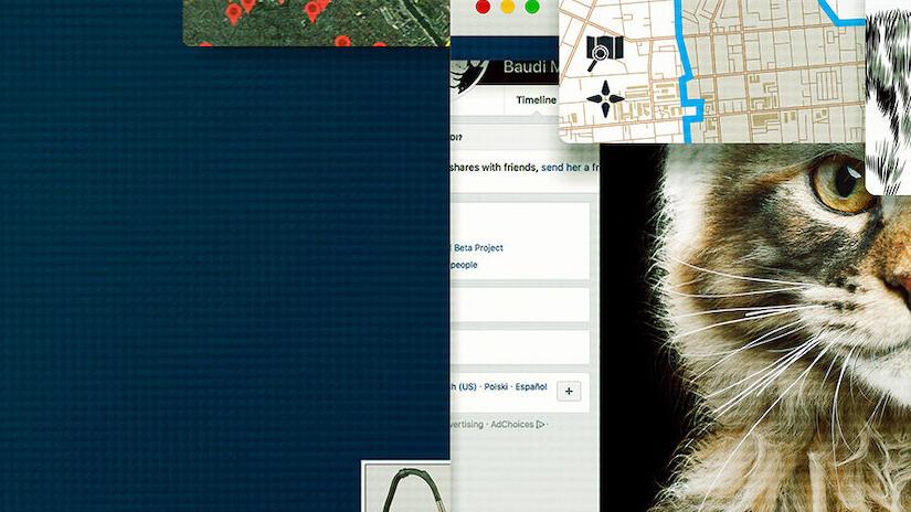 Immagine tratta da Giù le mani dai gatti: caccia a un killer online