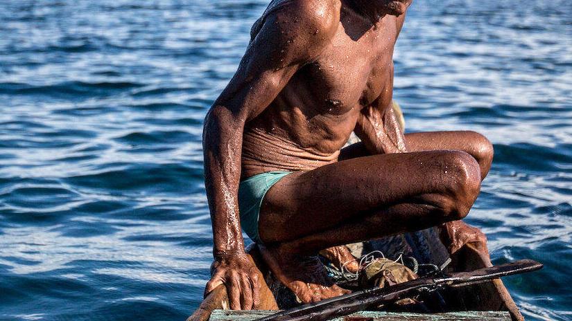 Immagine tratta da Jago: A Life Underwater