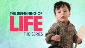 L'inizio della vita: La serie