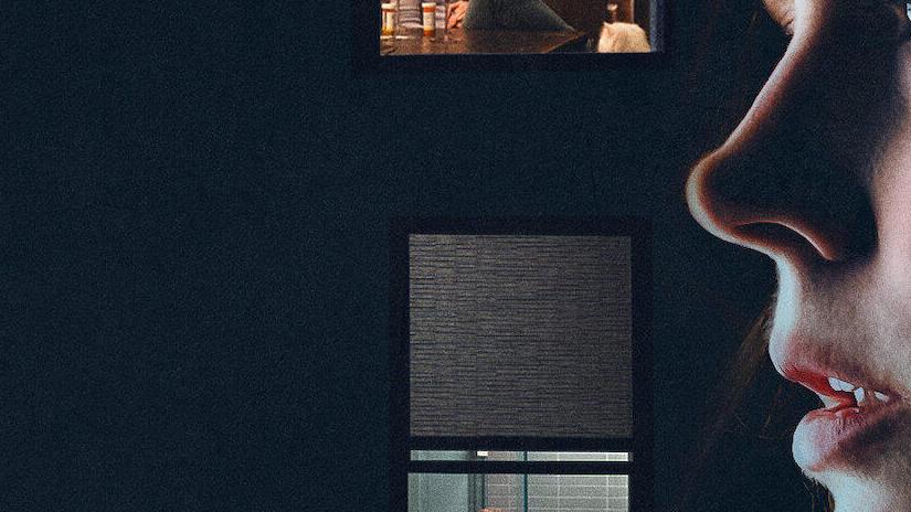 Immagine tratta da La donna alla finestra