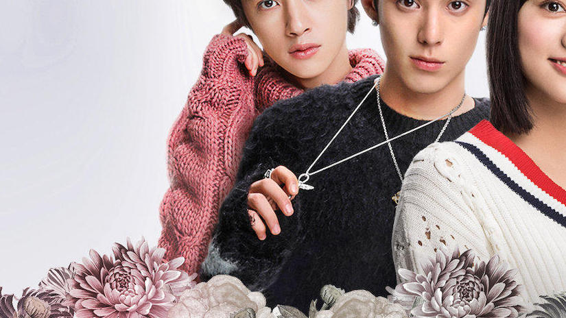 Picture from Meteor Garden