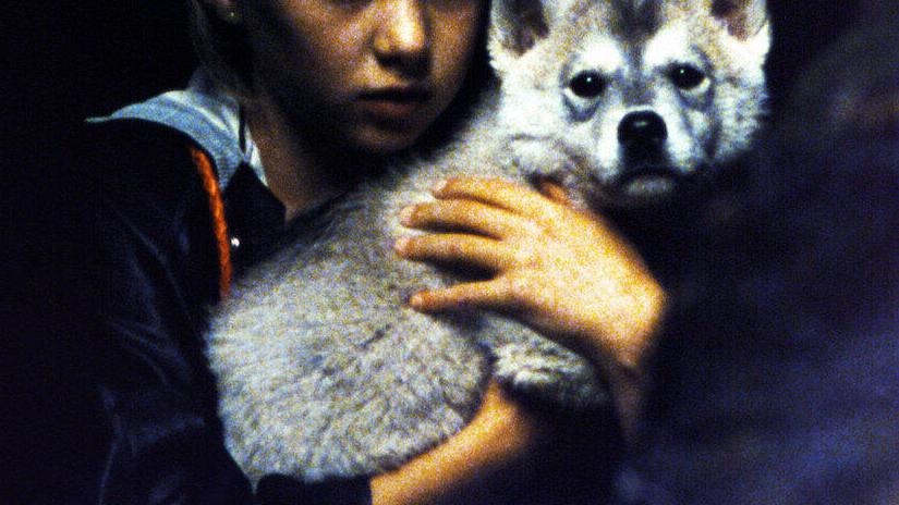 Immagine tratta da Misa dei lupi