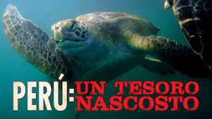 Perú: un tesoro nascosto