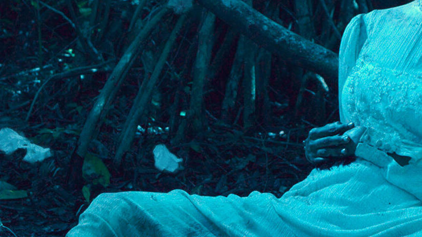 Immagine tratta da Selva trágica