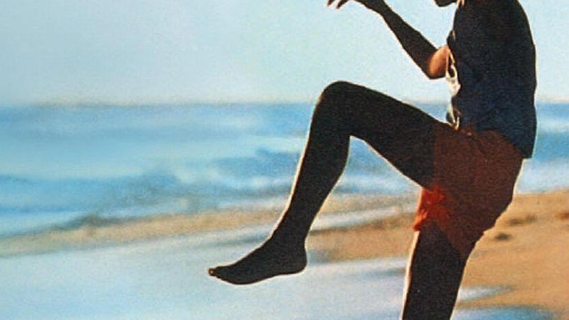 Immagine tratta da The Karate Kid - Per vincere domani